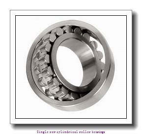 55 mm x 100 mm x 25 mm  NTN NUP2211ET2C3 Single row cylindrical roller bearings