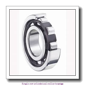 50 mm x 110 mm x 40 mm  NTN NUP2310ET2XU Single row cylindrical roller bearings