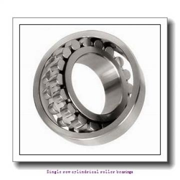 45 mm x 100 mm x 36 mm  NTN NUP2309EG1C3 Single row cylindrical roller bearings