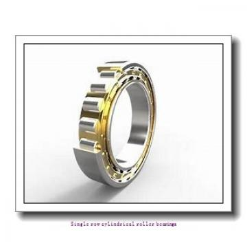55 mm x 100 mm x 21 mm  SNR NUP.211.E.G15 Single row cylindrical roller bearings